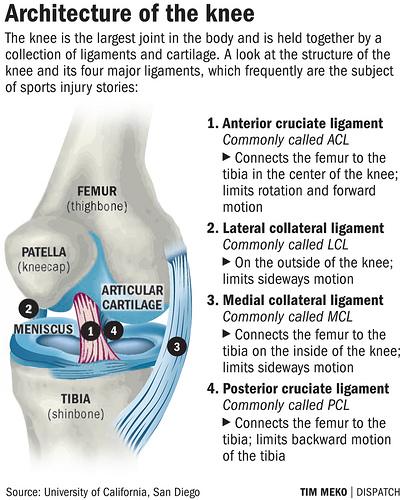Knee Ligament Damage